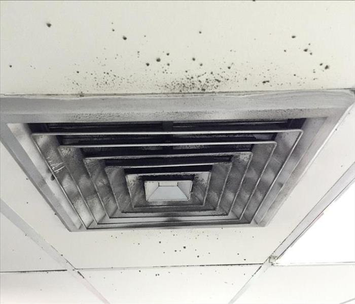 Black mold spots around air duct