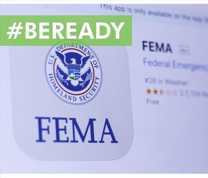 FEMA app in play store. close-up on the laptop screen.